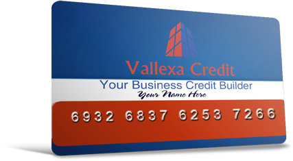 The 90 day fast start business credit builder system vallexa credit business credit questionnaire 30 minute evaluation reheart Images